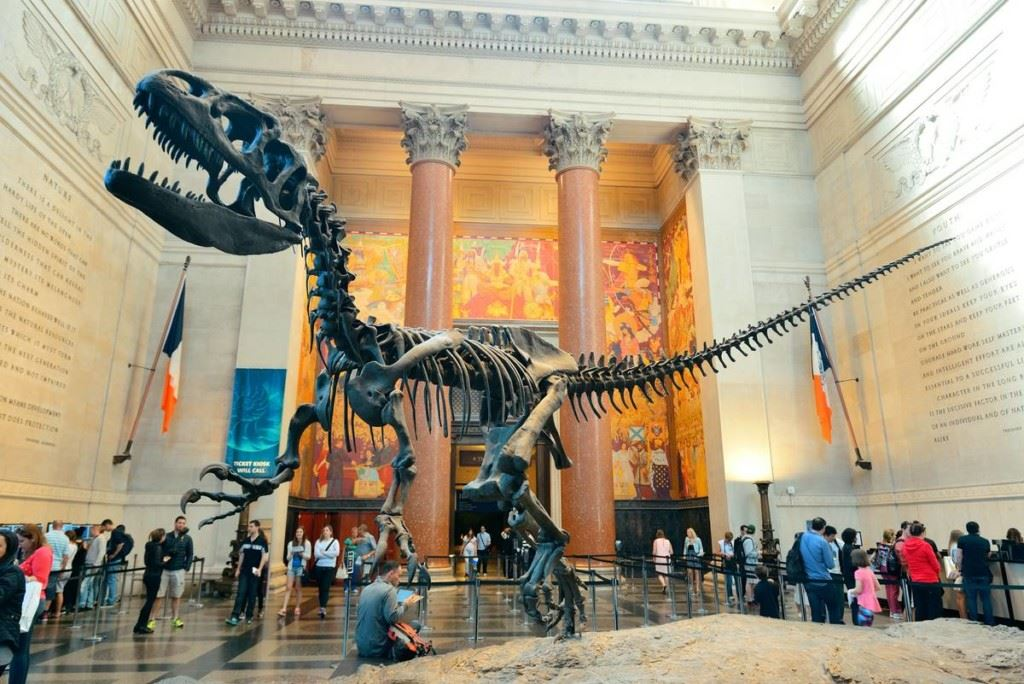 American Museum of Natural History Opens in new window