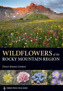 Wildflowers Of The Rocky Mountain Region Opens in new window
